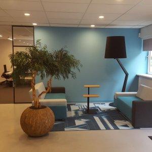 Dit is een interieur met een Eucalyptus. De GroenStyliste van StudioCentro komt graag naar je toe om deze kantoorplanten te plaatsen.