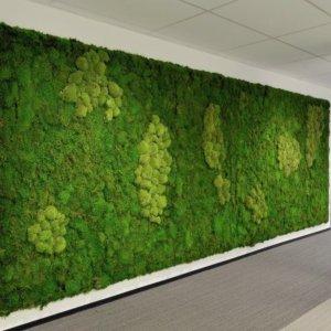 Dit is een interieur met een moswand. De GroenStyliste van StudioCentro komt graag naar je toe om een mummie moswand te plaatsen.