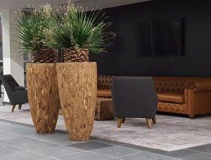 Dit is een interieur met Washingtonia palmen. De GroenStyliste van StudioCentro komt graag naar je toe om deze makkelijke kamerplanten te plaatsen.