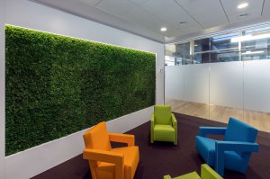 Dit is een interieur met een gemummificeerde moswand. De GroenStyliste van StudioCentro geeft je graag advies bij het plaatsen van een groene wand.