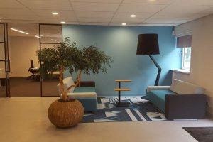 Dit is een interieur met een gemummificeerde eucalyptus. De GroenStyliste van StudioCentro adviseert je graag over deze makkelijke kamerplanten.